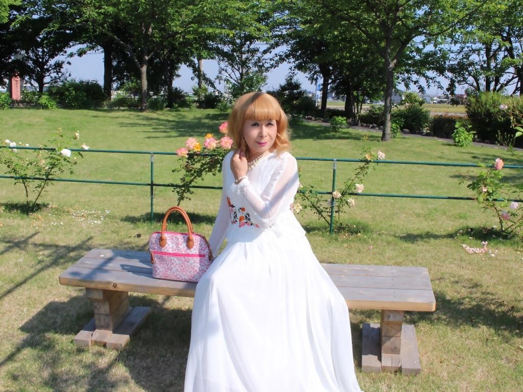 白ドレスバラ園G(4)