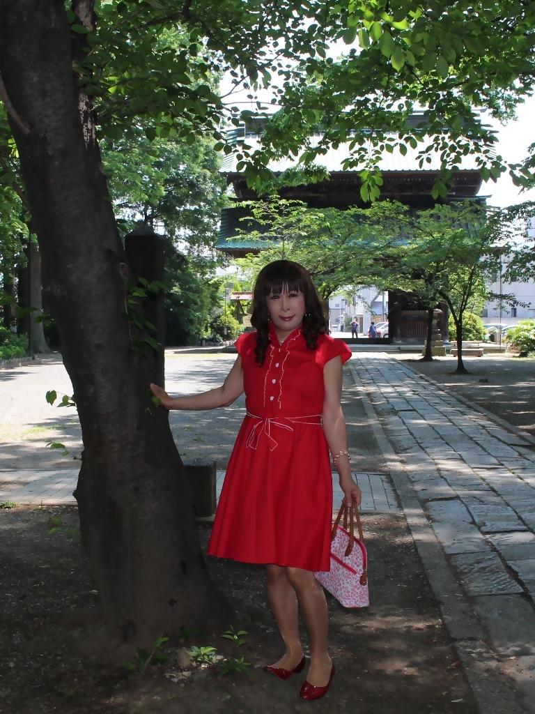 赤ワンピD(5)