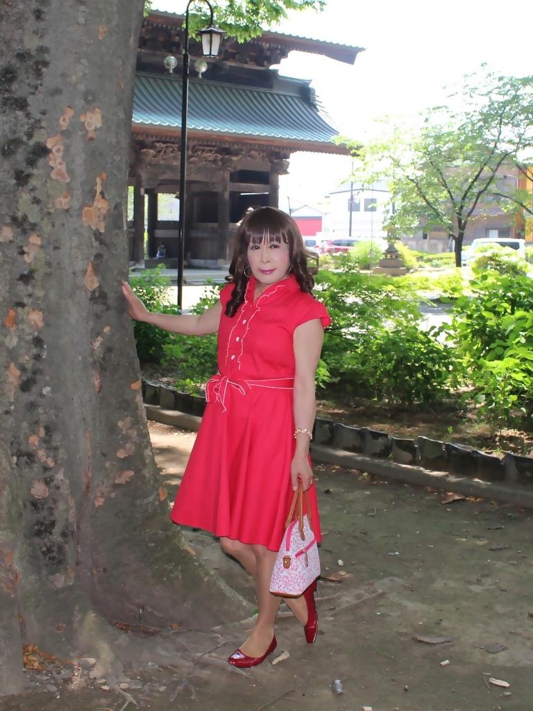 赤ワンピD(3)