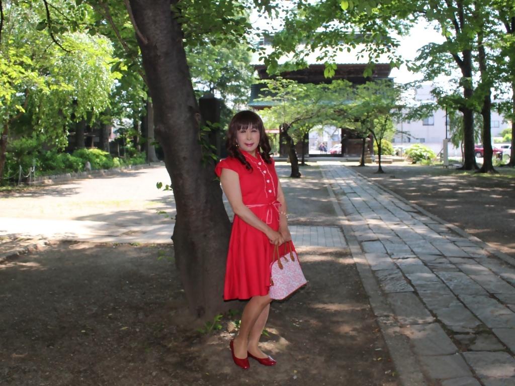 赤ワンピD(7)