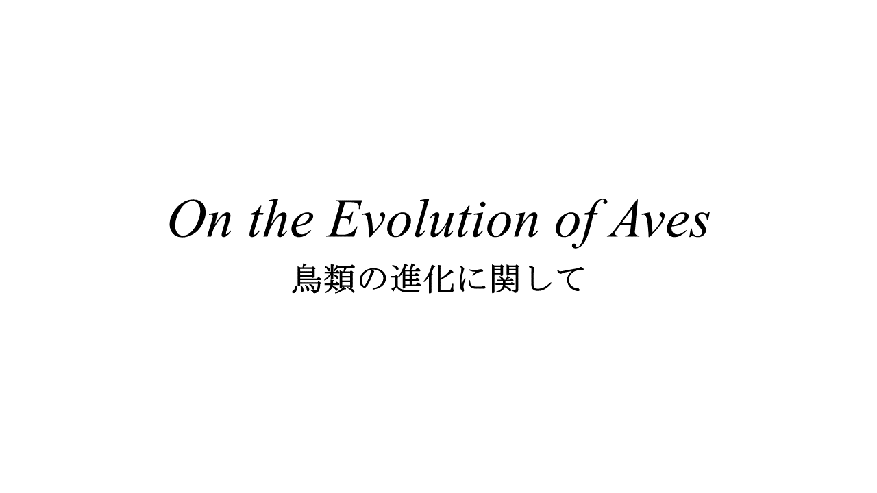 on the evolution of aves