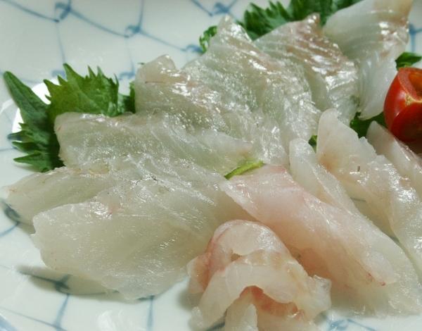 08IMG_8719 カサゴ刺身(600x470)