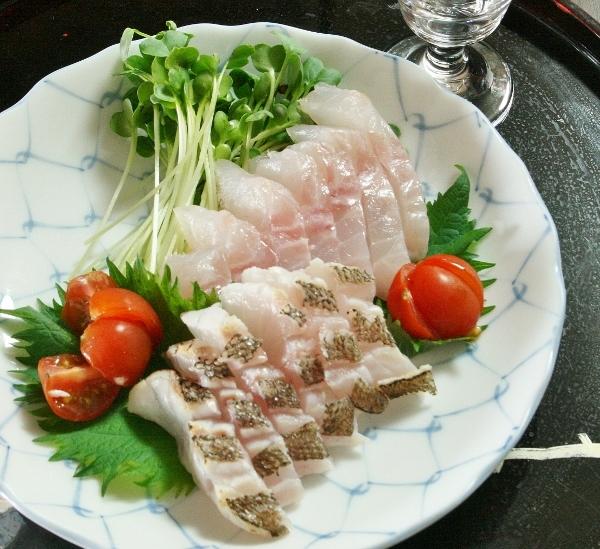 007 タヌキメバル 刺身IMG_9249 (600x549)