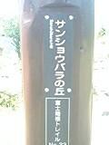 170610_0914~0001
