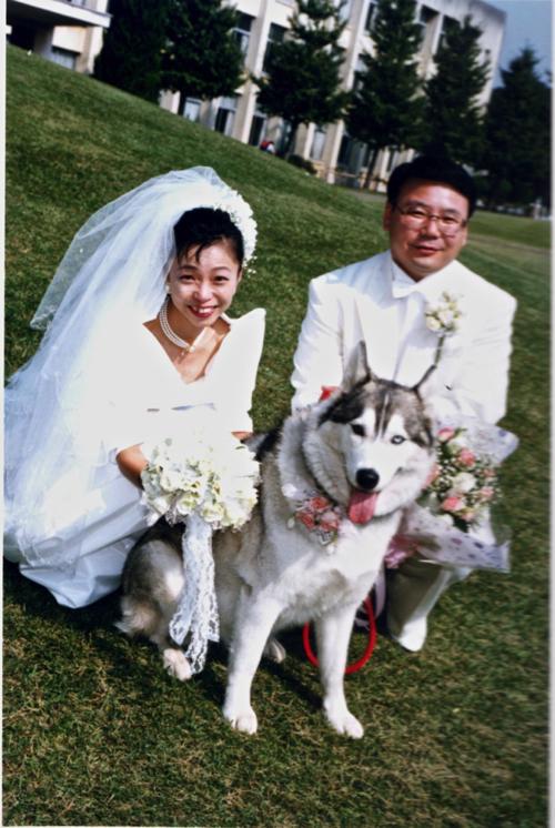 img001結婚式