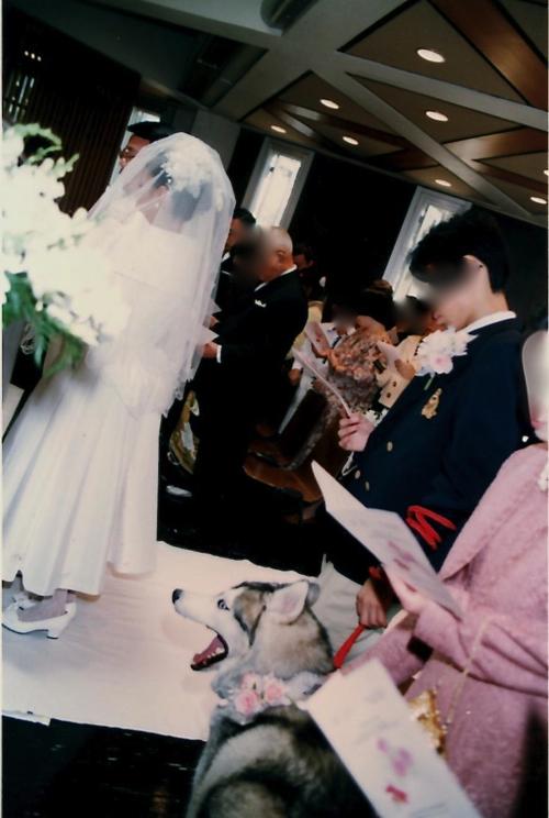img002結婚式モザイク