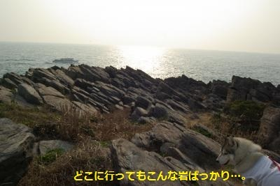 IMGP0469_convert_20170430232733.jpg