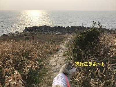 IMG_1712_convert_20170421000322.jpg