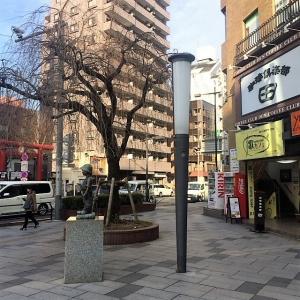 橋本~八王子 (146)