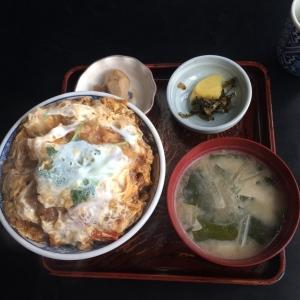 食べログ1 (510)