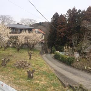 2017武蔵五日市~秋川 (11)