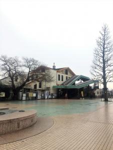 2017武蔵五日市~秋川 (154)
