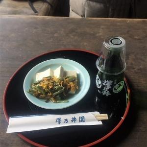 2017日向和田~沢井 (176)