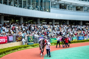 平成29年7月2日(日)中京競馬場③