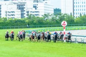 平成29年7月2日(日)中京競馬場⑦