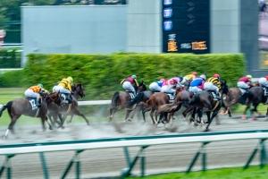 平成29年7月2日(日)中京競馬場⑫