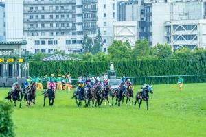 平成29年7月2日(日)中京競馬場⑬