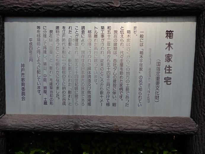 P6030076.jpg