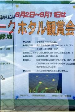 ホタル鑑賞会2017チラシ