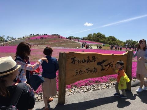 2017年茶臼山芝桜まつり(9)