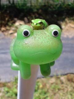 畑の蛙オンザ蛙