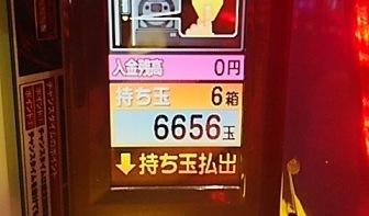 DSC_4575.jpg