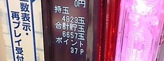 DSC_4645.jpg