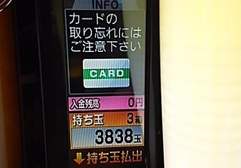 DSC_5108.jpg