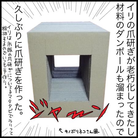 トンネル爪研ぎ1