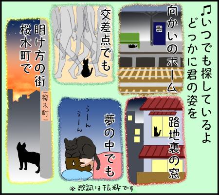 ネコ探しの歌3