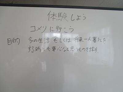 IMG_5940.jpg