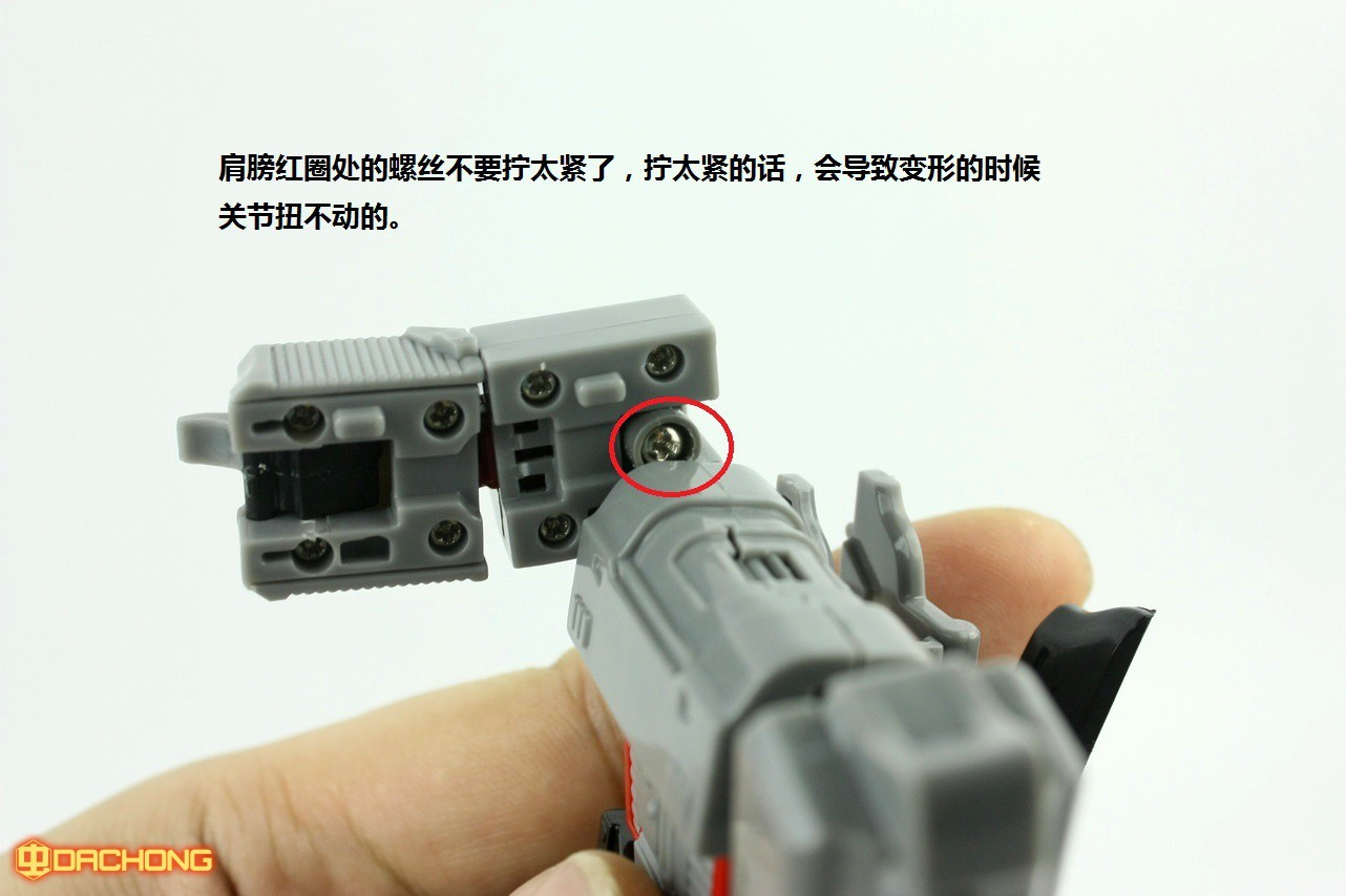 S189_Megatron_inask_047.jpg