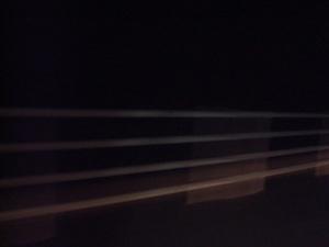 49 桂浜付近DSC01376