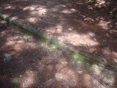 12 斜めの枕木DSC01428