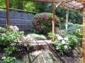 牡丹庭園1
