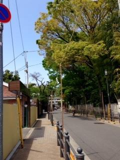 29apr2017 大国魂神社 東京競馬場側順路