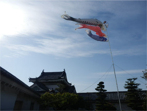 和歌山城_鯉のぼり