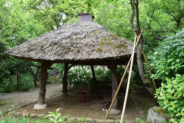 京王百草園6