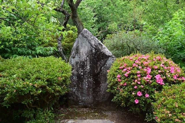 京王百草園3