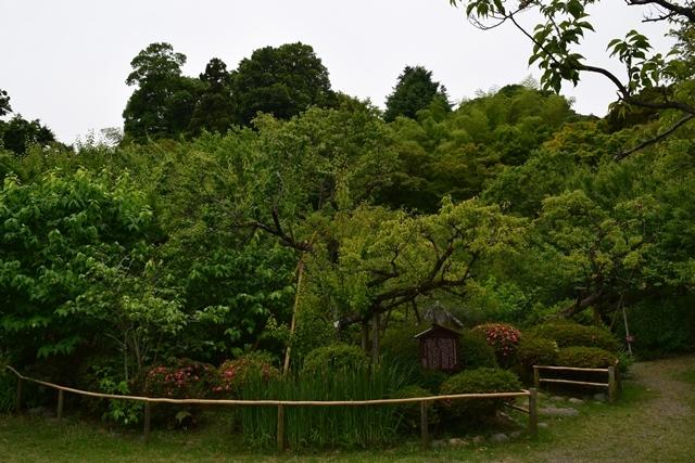 京王百草園2