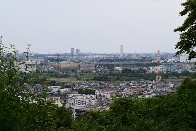 京王百草園23