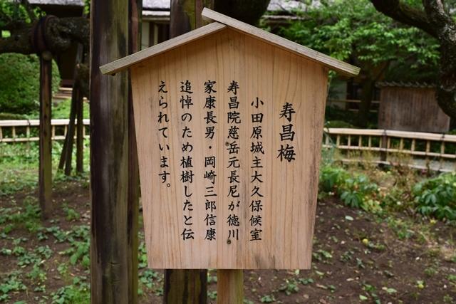 京王百草園19