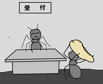 アリ太 9
