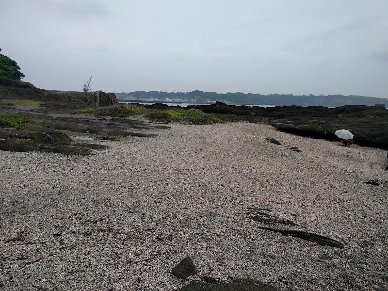 城ヶ島の東側の貝殻でできた海岸 全体の様子