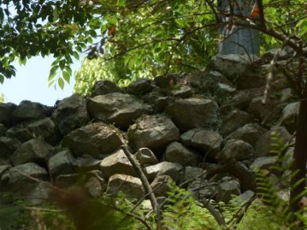 鹿島城跡 3