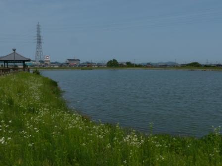 堀江新池親水公園 1