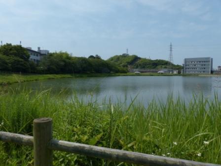 堀江新池親水公園 2