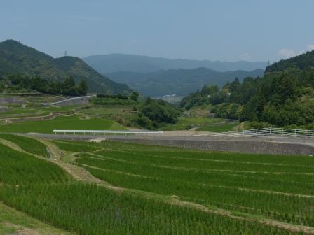 棚田風景 4