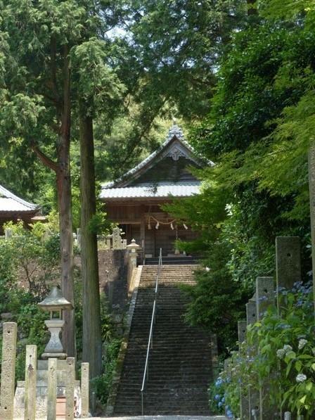 惣河内神社 紫陽花の咲く風景 2