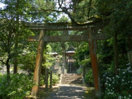 惣河内神社 紫陽花の咲く風景 8